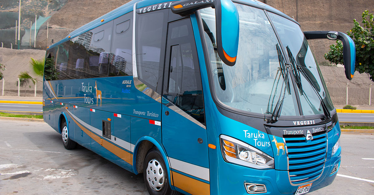 Transporte turístico en minibus